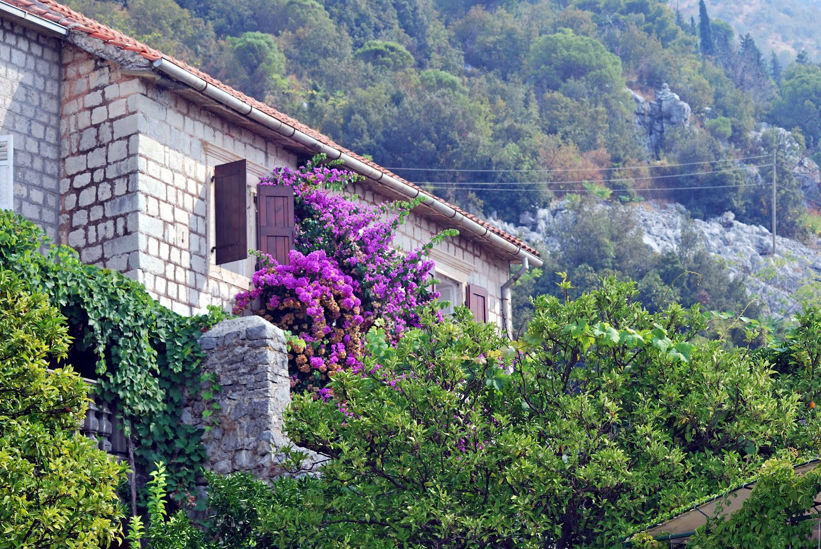 One of many beautiful stone houses in Perast