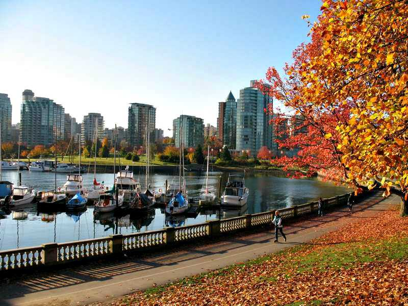 Stanley Park Seawall in Autumn (via)